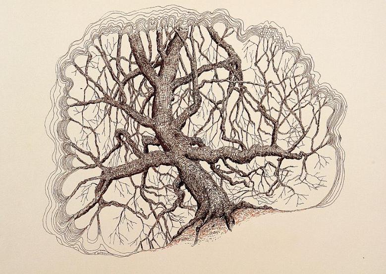 Tree In Winter II